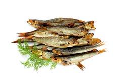 Rökt skaldjur: små stackare i olja som isoleras på vit bakgrund Royaltyfria Bilder
