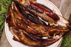 rökt varmt för fisk meat rökte Rökt fisk Råg rökt fisk Royaltyfri Foto
