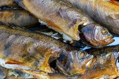 rökt varmt för fisk rök meat rökte Rökt fisk Röka rum som lagas mat på insatsen perch rökt bakgrundsfisk royaltyfria bilder
