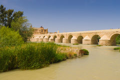 Römische Brücke von Cordoba Stockbild