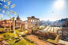 Römische Ruinen in Rom, Forum stockfotos