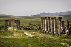 Römische Ruinen von Volubilis. Lizenzfreie Stockfotografie