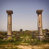 Römische Ruinen von Volubilis. lizenzfreie stockbilder