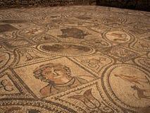 Römische Ruinen von Volubilis. stockfotografie