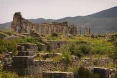 Römische Ruinen von Volubilis. stockfotos