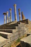 Römische Ruinen von Volubillis Stockbild