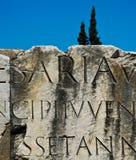 Römischer Font, Foro Romano Lizenzfreie Stockfotos