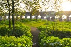 Römisches Acqueduct Stockfotos