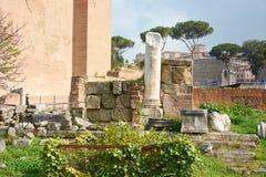 Römisches Forum Lizenzfreie Stockfotos