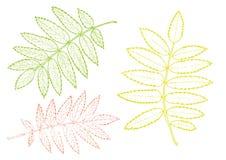 Rönnuppsättning av sidor på en vit bakgrund eps10 blommar yellow för wallpaper för vektor för klippning för rac för orange modell vektor illustrationer