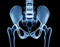 Röntga bilden av en man som isoleras på svart Fotografering för Bildbyråer