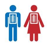 Röntgenstrålesymbolsman och kvinna Att bry sig för hälsa, hälsovård, diagnos som kontrollerar bröstkorgvektorillustrationen på vi vektor illustrationer
