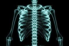 Röntgenstraalborst Stock Afbeeldingen