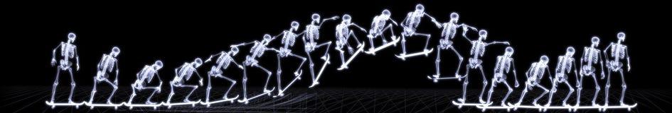 Röntgenstrahl des menschlichen skeleton springenden Freistils lizenzfreies stockbild