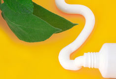 Rör av tandkrämmintkaramellanstrykning Royaltyfri Bild