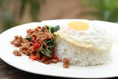 Rör basilika och det stekte ägget med lagade mat ris Royaltyfria Bilder