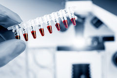 Rör med genetiska prövkopior Arkivbild