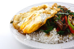 Rör stekt griskött med basilika och ägget som tjänas som med ris Fotografering för Bildbyråer