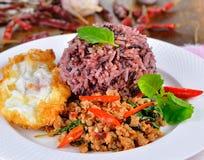 Rör stekt griskött med basilikabladet och den varma chili Arkivbild