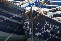 röra av små blåa fiska slagträn kurade tillsammans i port royaltyfria foton