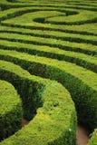Röra sig i spiral maze Arkivbild