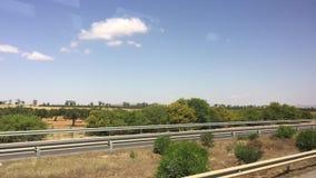 Rörande bil för fönstersikt på huvudvägvägen längs gröna träd och växten i varm öken arkivfilmer