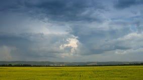 Rörande cumulonimbusmoln över gult fält arkivfilmer