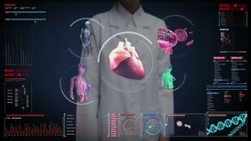 Rörande digital skärm för kvinnlig doktor, scanningblodkärl för kvinnlig kropp som är lymfatiskt, hjärta, cirkulations- system i  arkivfilmer