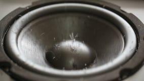 Rörande våt ljudsignal högtalare stock video