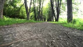 Rörelse av den låga kameran till vandringsledet stock video