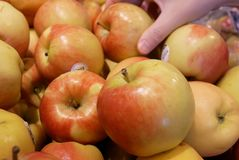Rörelse av handen för kvinna` som s väljer det organiska ambrosiaäpplet inom supermarket Royaltyfri Fotografi