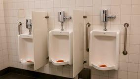 Rörelse av rent nytt rum för offentlig toalett stock video