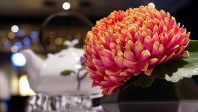 Rörelse av varmt te och blomman på tabell- och suddighetsrörelse av folk tycker om mål inom restaurang lager videofilmer