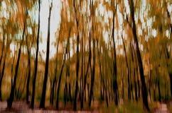 Rörelse för skog in camera Arkivfoto