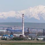 Rörväxt i Shymkent kazakhstan Arkivfoton