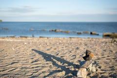 Röset vaggar högen, lång skugga med havbakgrund royaltyfria bilder