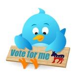 Rösta för demokrat Arkivfoto