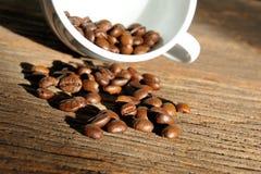 Röstkaffeebohnen stockbilder