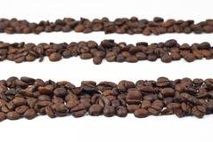 Röstkaffeebohnen Lizenzfreie Stockfotos