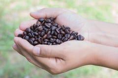 Röstkaffeebohnen der Kaffeebohnen in der Hand, Unschärfe des natürlichen Hintergrundes Stockfotos