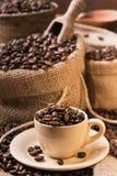 Röstkaffeebohnen in der Kaffeetasse Lizenzfreies Stockbild
