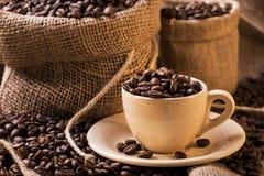 Röstkaffeebohnen in der Kaffeetasse Lizenzfreie Stockfotos