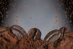 Röstkaffeebohnen und -mehl lizenzfreie stockfotografie