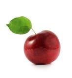 Rött äpple Royaltyfri Fotografi