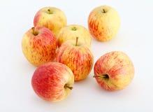 Rött äpple Arkivbilder