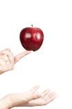 Rött äpple 13 Royaltyfria Foton