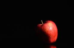 Rött äpple Royaltyfri Foto
