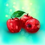 Rött äpple för vektor stock illustrationer
