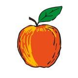 Rött äpple - hand isolerade drog frukter Royaltyfri Fotografi