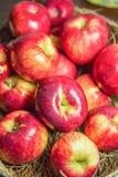 Rött äpple i en korg Royaltyfri Foto